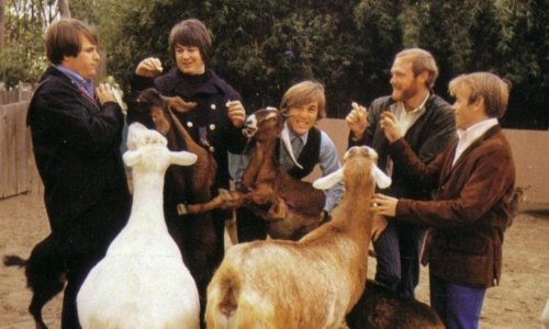 The Beach Boys - Pet Sounds performed by Jouis